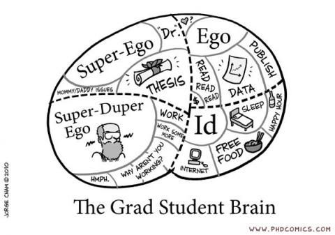 This is your brain. This is your brain on grad school.