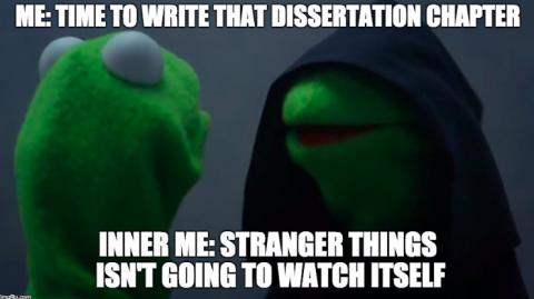 grad school meme kermit